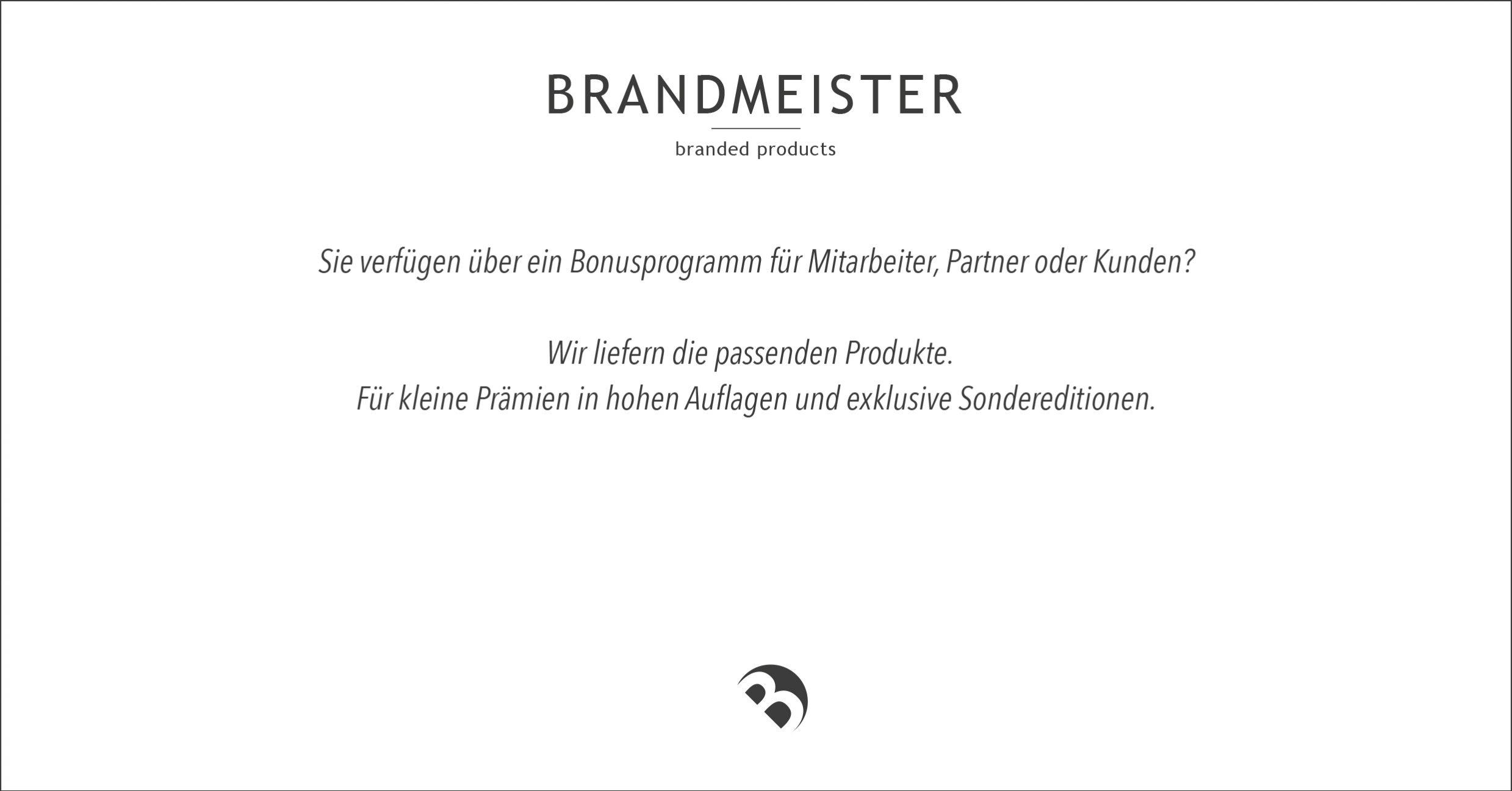 Booklet Brandmeister II.indd